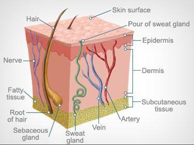 Best Skin Laser Specialist in Mumbai